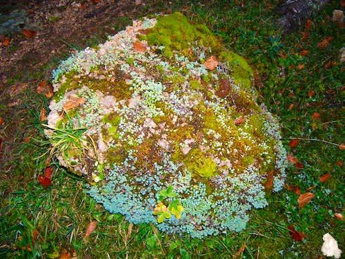 Small rock