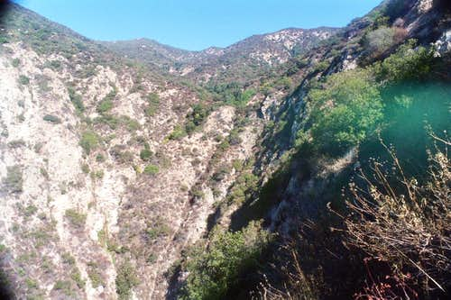 Looking up Bailey Canyon, San Gabriel Mtns.