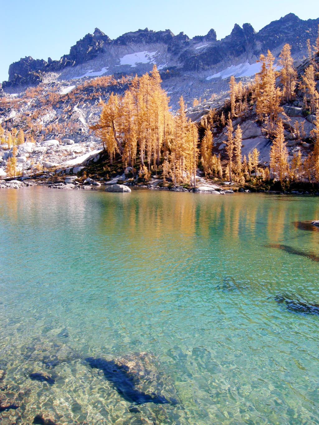 Perfection Lake larches