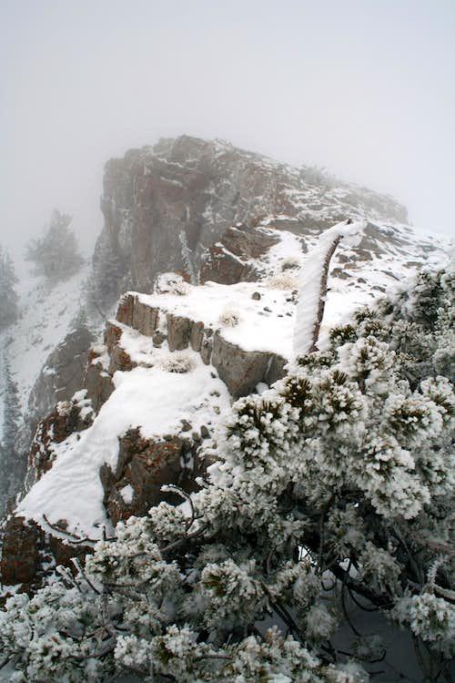 Naomi Peak with fog