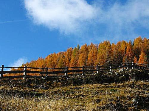 Fall in Sarntal