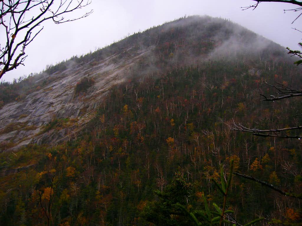 Wedge Brook Trail