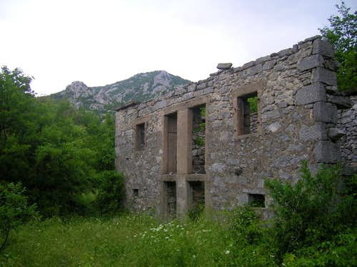 Old house remains