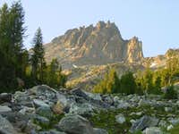 Seven Fingered Jack from...