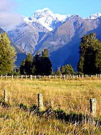 Mt Tasman
