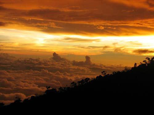 Adventures in Borneo (climbed Mt. Kota Kinabalu)