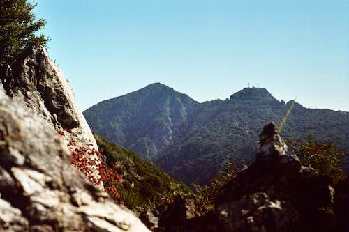 San Gabriel Peak (left) and Mt. Disappointment (right) from Mt. Lawlor NW Ridge