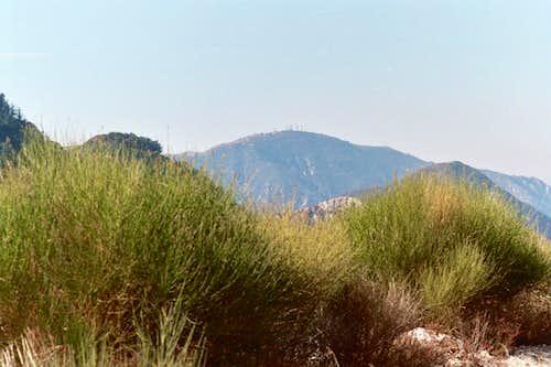 Mt. Lukens (5,074'), San Gabriel Mtns.