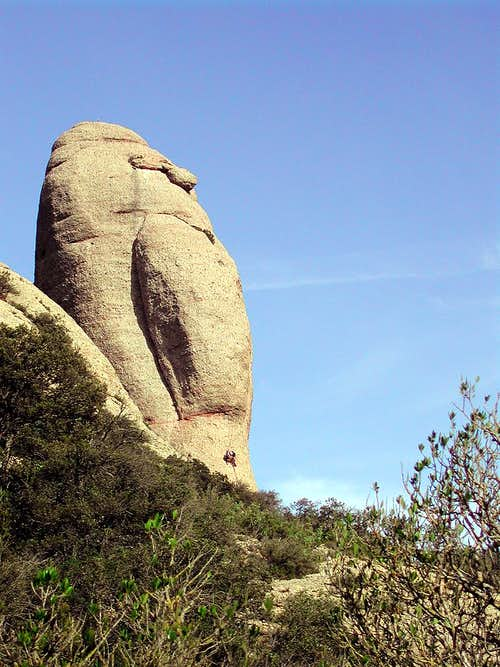 a strange pillar (caval bernat ?)