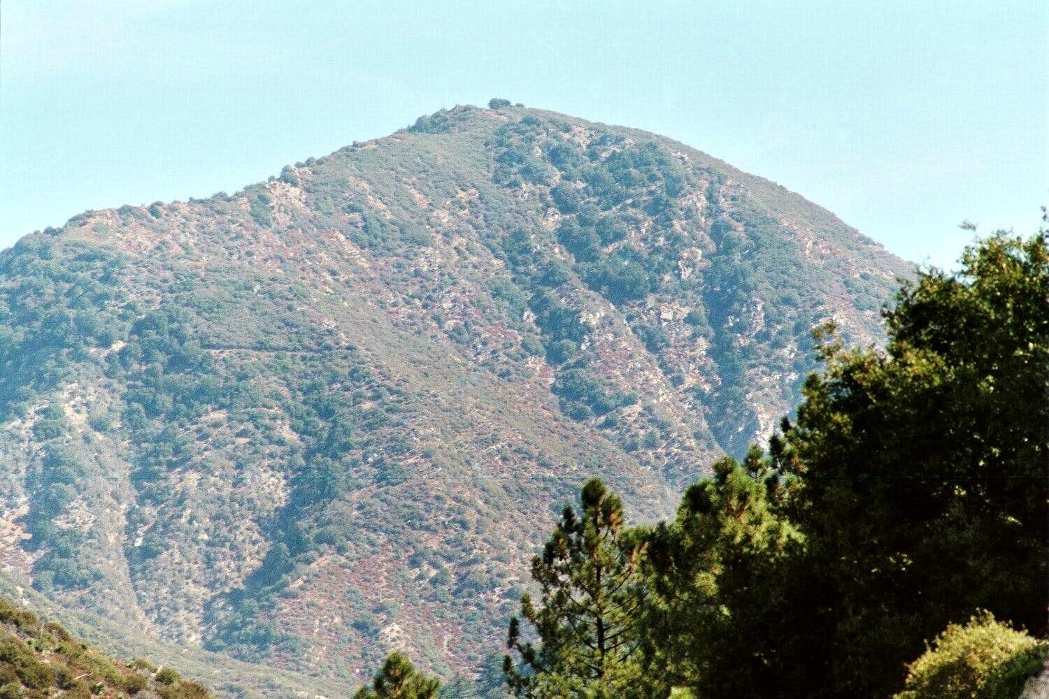 Mt. Lawlor