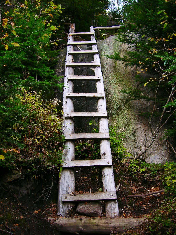 Scenic Trail