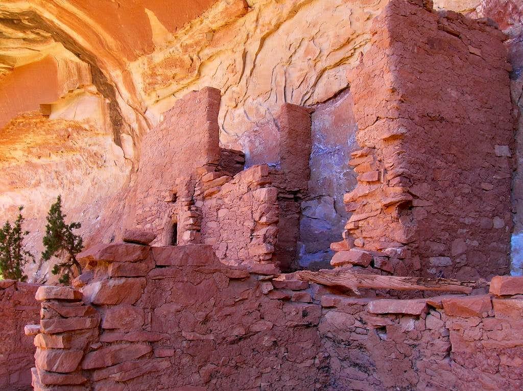Ruins in Grand Gulch