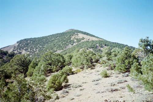 Grapevine Peak