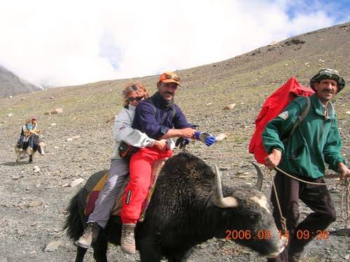 Yak Safari to Shimshal Pamir 4745m