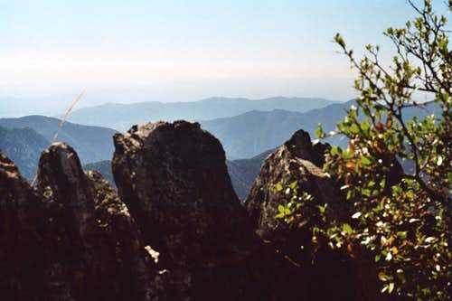 View West from Mt. Lawlor's West Ridge