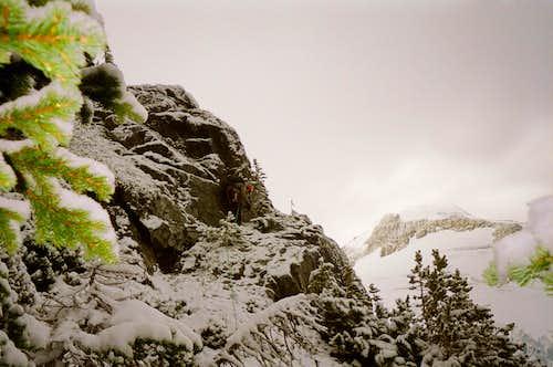 Alpine fun