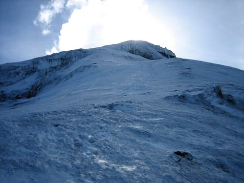 Chimborazo (Only one Cuy was Harmed During this Climb!)