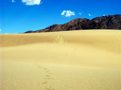 Dunes in Death Valley