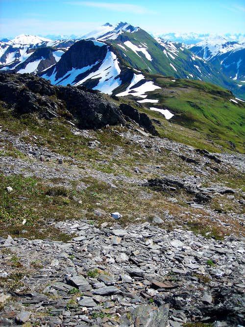 Views from Mount Juneau