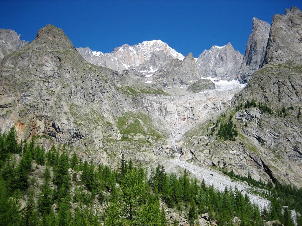 Forest of Val Veny