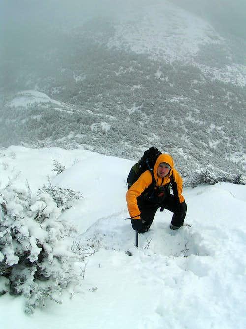 Mansfield Snow!