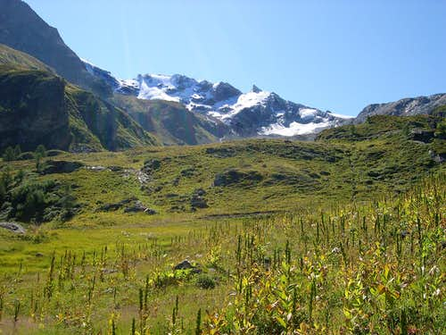 Entering in Vallone d'Invergnan: <br> in the background  the Grande Rousse range