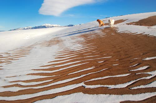 Patterns of snow melting on sand