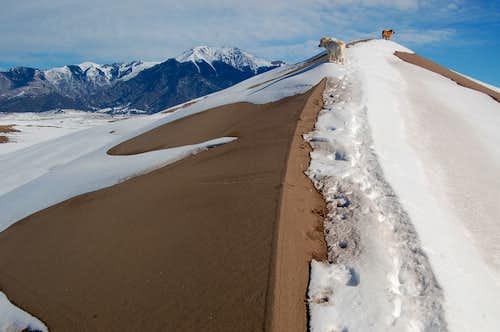 Dune and Mount Herard