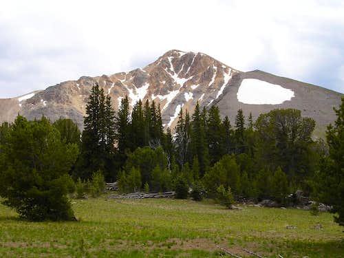 Yellow Peak