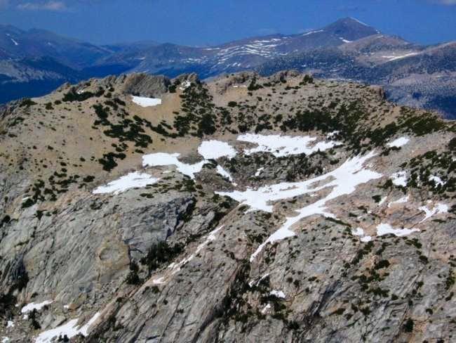 Fletcher Peak summit area...