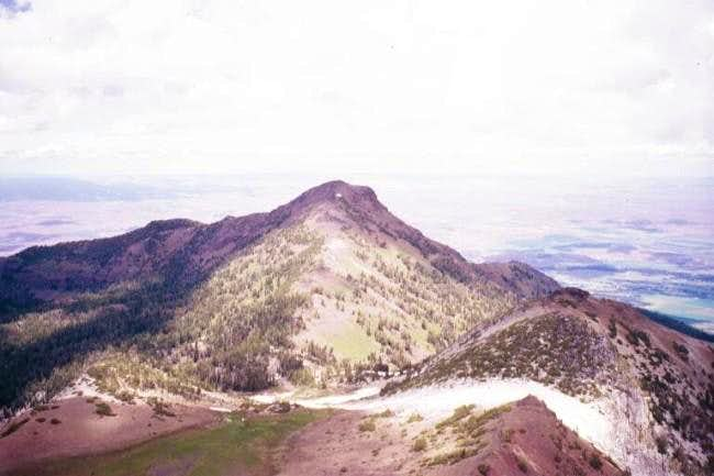View of Ruby Peak from summit...