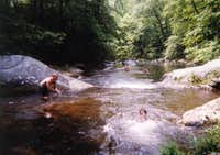 Cohutta Wilderness