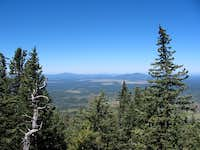 View from just below timberline