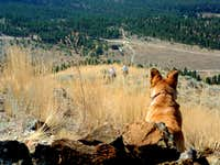 Nipper watches as Kris and I approach the summit.