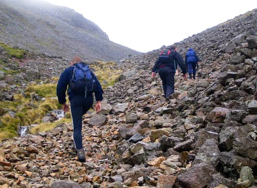 Grinding their way up the scree.