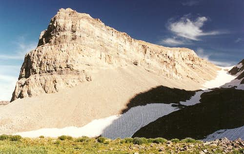 The Shoulder and South Timpanogos