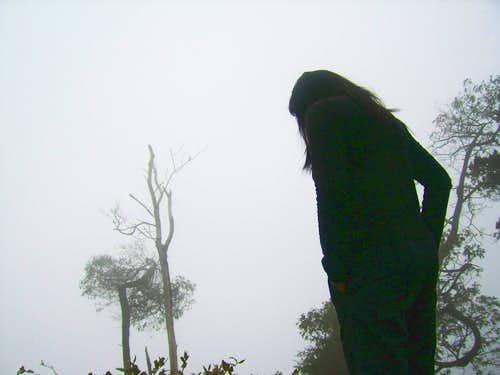 at the mist of mount slamet