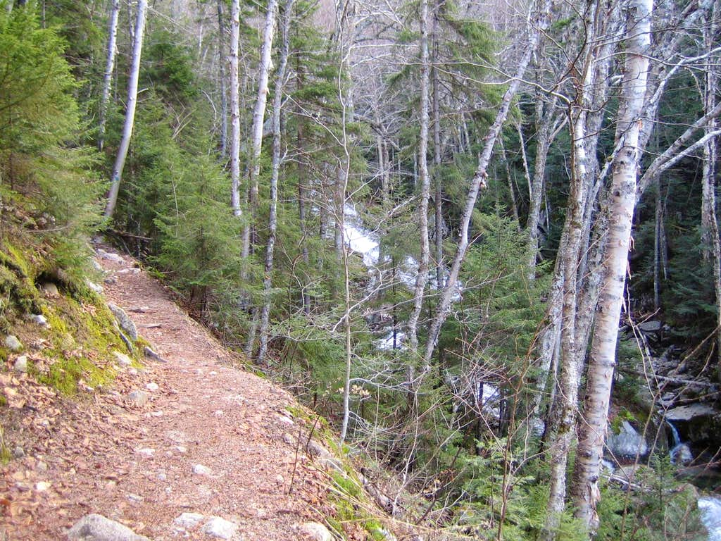 going up the Falling Waters trail