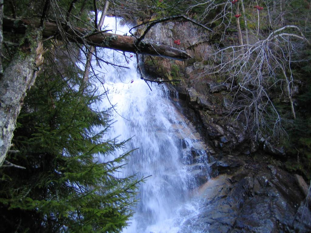 falling water on the Falling Waters trail