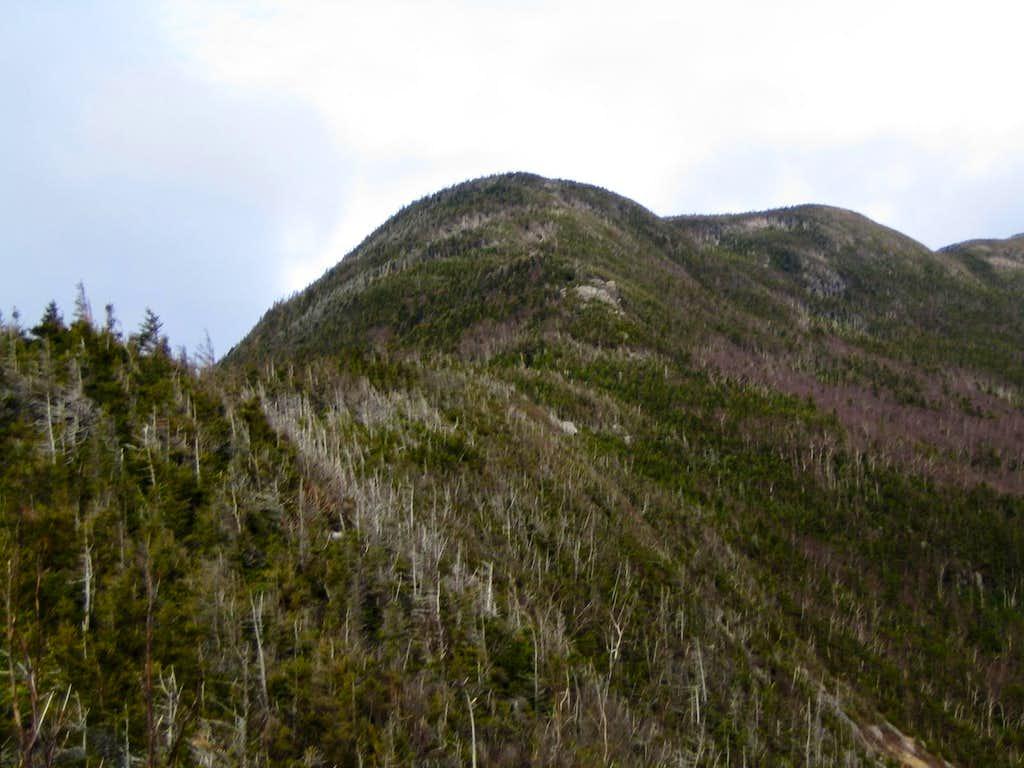 Agony Ridge