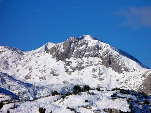 Hoher Ochsenkogel (2527 m)