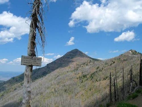 Strawberry Mtn from the trail...