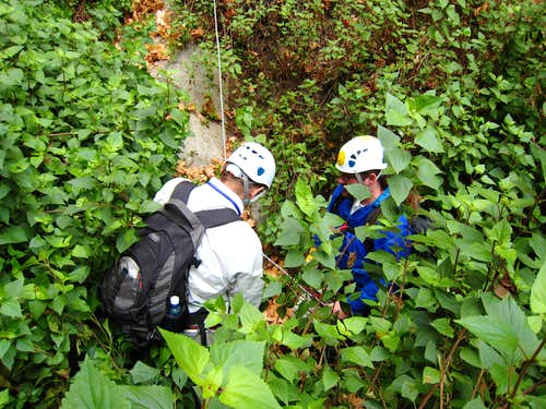 Pulling in the Rappel Rope in Abundant Shrubbery