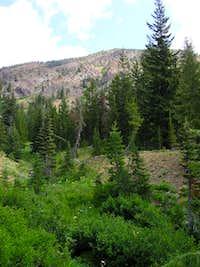 Earl Peak from Bean Creek