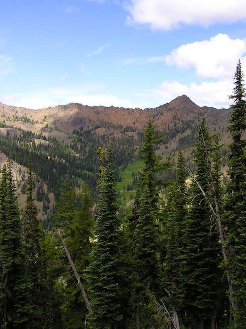 Upper Bean Creek Basin from trail