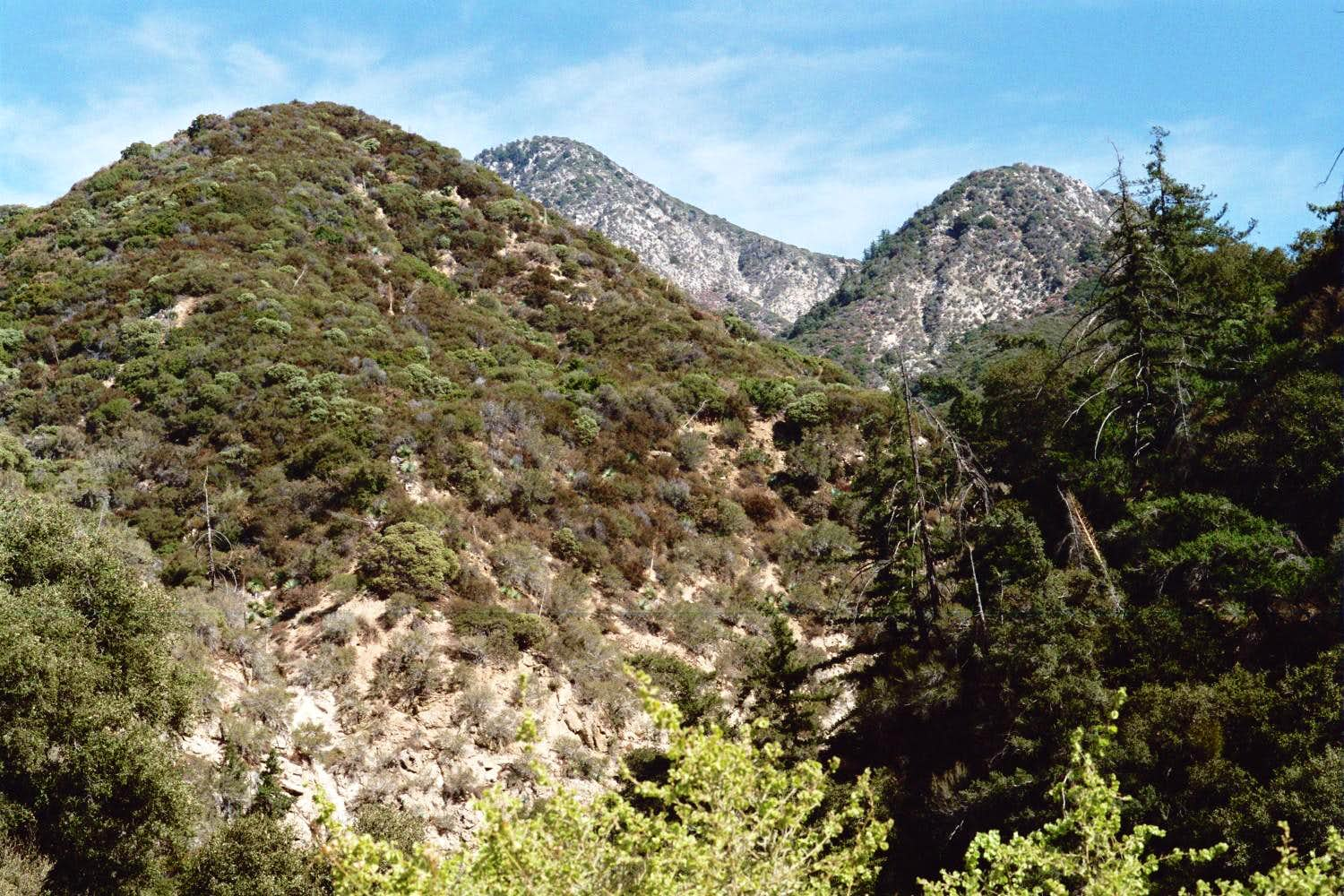 Colby Canyon