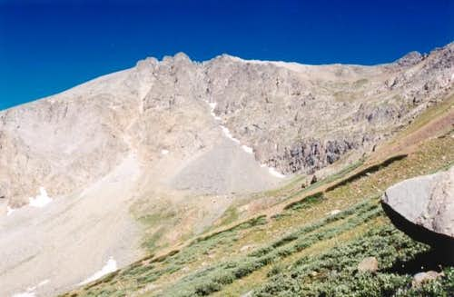 Grizzley from McNasser Gulch.