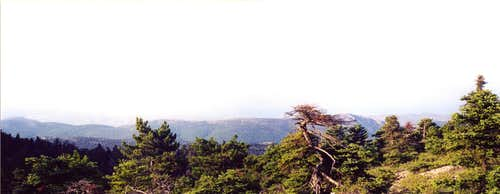 Panoramic view of N and NE Parnitha from 1000m elevation,near Mola