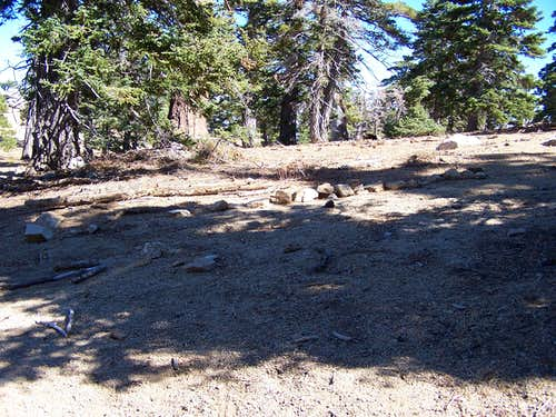 Use trail from PCT to summit