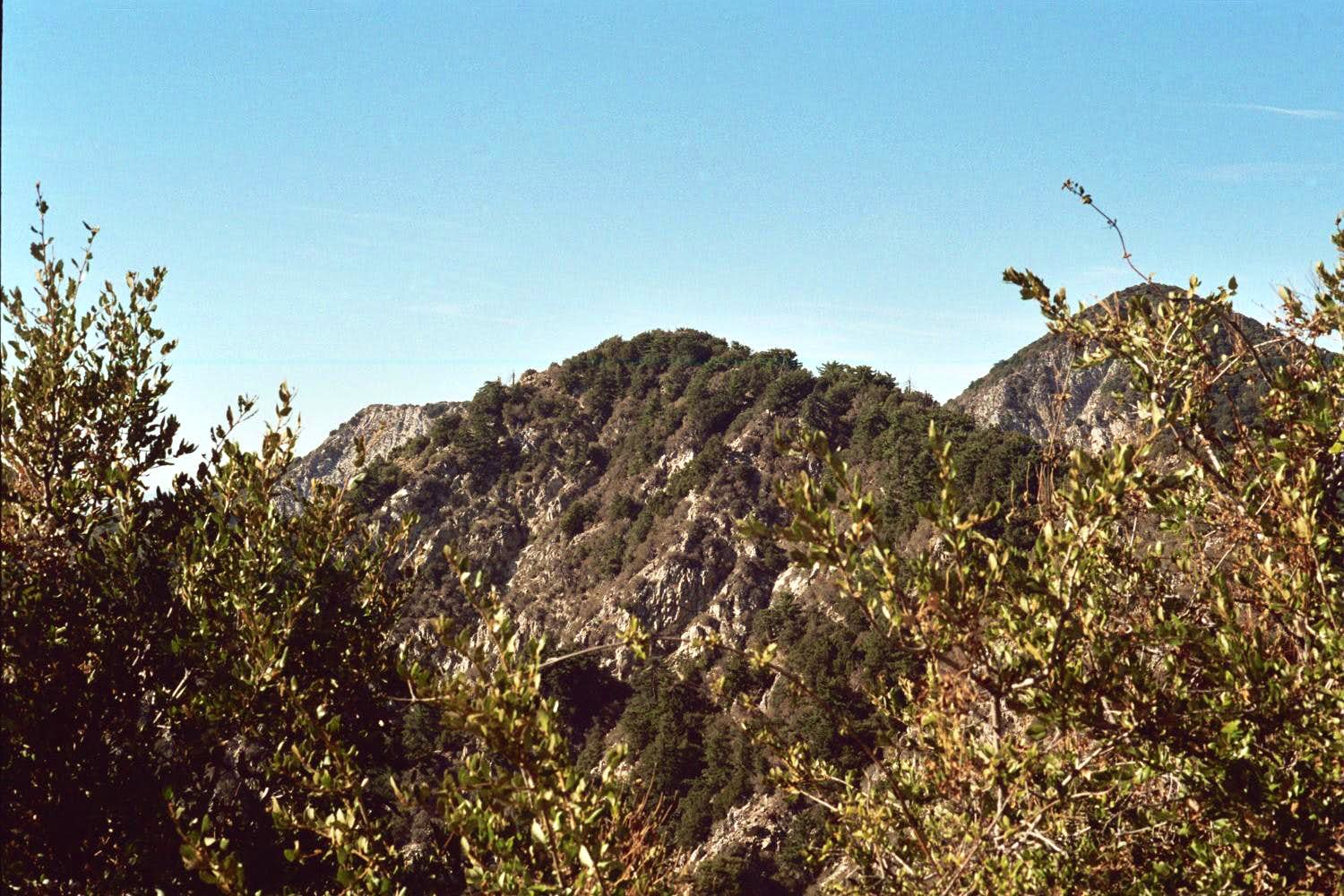 Occidental Peak